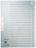 Register blanko A4 20-teilig Tauenpapier Leitz 100g grau 223x300mm Tab verstärkt